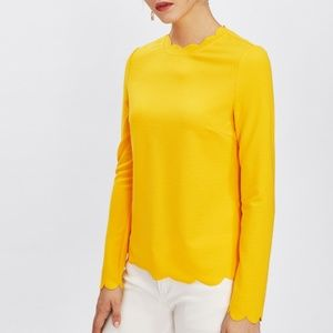 Women's Long Sleeved Scalloped Blouse Yellow Small